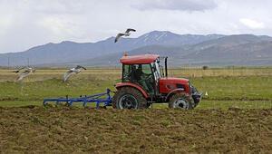Bol yağış, çiftçi ve besicinin beklentisini arttırdı