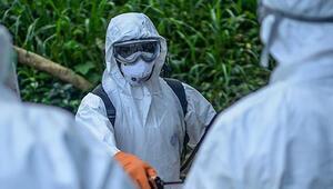 Ebola virüsü nedir Ebola virüsü belirtileri