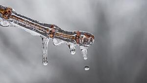 Bugün hava nasıl olacak Termometreler sıfırın altında 24,6 dereceyi gösterdi.