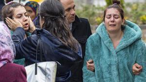 Ankara'daki köpek katliamı ile ilgili karar çıktı