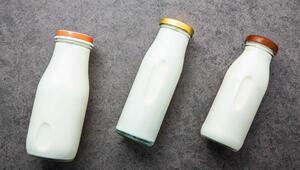 Ordudaki süt evleri bölge ekonomisine katkı sunacak