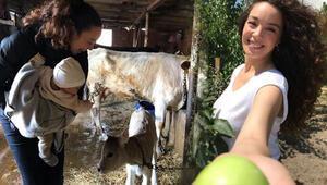 Azra Akının çiftlik hayatı