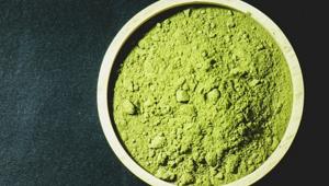 Matcha tozu nedir, nasıl kullanılır