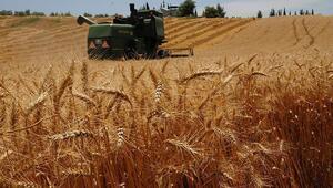 TİKAdan Senegal ve Gambiada tarımsal kalkınmaya destek