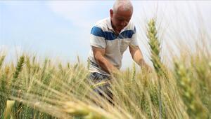 Köyleri terk etmeyin, çiftçilik daha karlı olacak