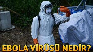 Ebola virüsü nedir Ebola hastalığı nasıl anlaşılır