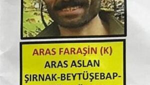 Giresunda, gri listede aranan PKKlı terörist, yakalandı