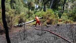Heybeliadada orman yangını