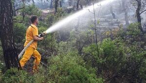 Bilecikteki orman yangını tamamen söndürüldü