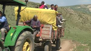 Binlerce hayvanla yaylaya göç