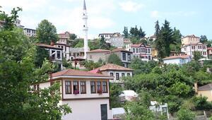 Doğu Karadenizin Safranbolusu