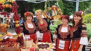 Köstendil Kiraz Festivalinden renkli görüntüler