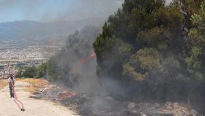 Hatay'da ormanlık alan yandı
