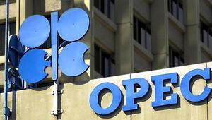 OPEC üyesi olmayan üreticiler de üretim kısıntılarına katıldı