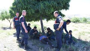 Afganistanlı 13 kaçak göçmeni, İstanbul diye köyde bıraktılar