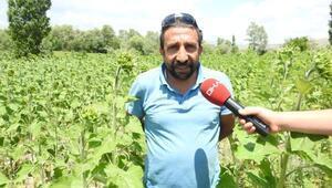 Büyük ikramiyeyi alan çiftçi, köyüne geri döndü
