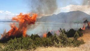 Eğirdir Gölü kıyısında çıkan orman yangını büyümeden söndürüldü
