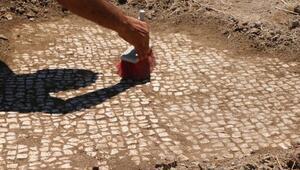 Adıyamanda, baraj kıyısında mozaik bulundu