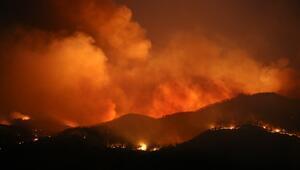 Muğla Dalaman'da yangın! Saatlerdir yanıyor...