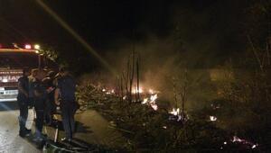 Sazlık ve otluk alanda çıkan yangın korkuttu