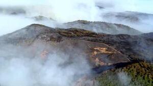 Bakan Pakdemirliden Dalaman yangını için rüzgar uyarısı