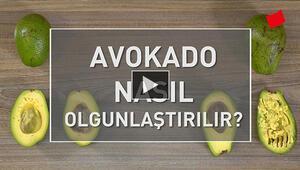 Avokado Nasıl Olgunlaştırılır
