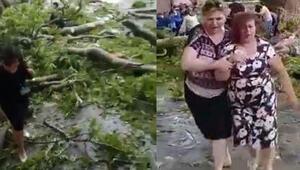 500 yaşındaki ağacın dalı kırıldı