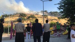 Gaziantepte fıstık bahçesinde yangın