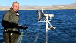 Yasak kalktı, balıkçılar inci kefali için Van Gölüne ağlarını attı