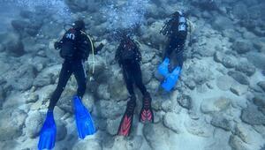 Antalyanın muhteşem su altı dünyası