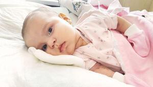 6 aylık ömrünün 2 ayını tedavide geçirdi... İlik olun