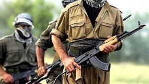 Saldırı için Türkiyeye gelen terörist tutuklandı