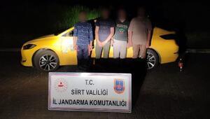 Siirtte yakalanan 4 kaçak göçmene 14 bin lira ceza