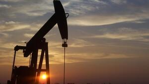 Petrol ithalatı mayısta arttı