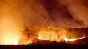 5 bin hindi yangında telef oldu