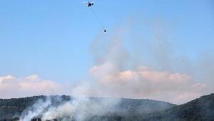Sandıklıda 5 hektar meşe alanı yandı