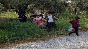 Çanakkalede 54 kaçak göçmen yakalandı