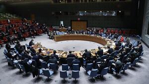 Polonyanın BM Güvenlik Konseyi Dönem Başkanlığı başladı