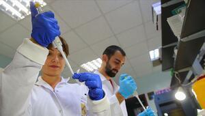 Türk bilim insanları 4 ölümcül virüs buldu