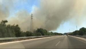 Çeşmede 15 hektar makilik alan yandı