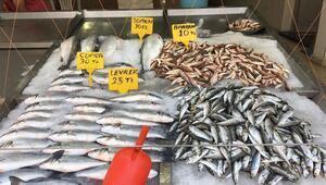 Gıda harcamalarında et, balık ve deniz ürünleri ilk sırada
