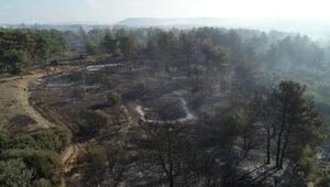 Geliboludaki yangında şehitlik, siper hattı ve savaş alanı zarar görmedi