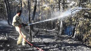Kütahyadaki yangın 16 saatte kontrol altına alındı