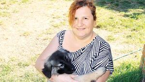 Engelli hayvanların Zuhal annesi: Desteğinize ihtiyaç var