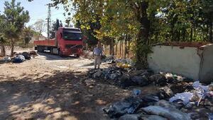 Bursa'nın Orhangazi ilçesinde THK 3 bin 81 deri topladı