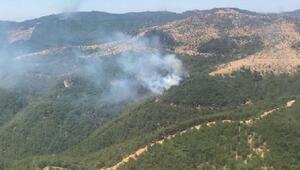 Karabağlarda orman yangını