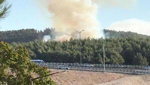Bucada çıkan orman yangını söndürüldü