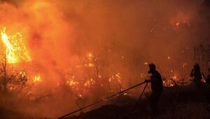 ESİAD'dan Yangın yaralarını birlikte saralım çağrısı