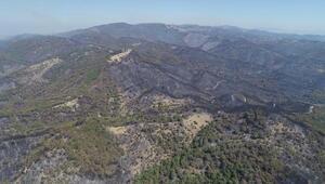 İzmir polisinden yanan ormanlar için başlatılan kampanyaya destek