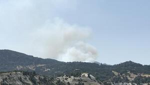 Son dakika... Kütahyada orman yangını